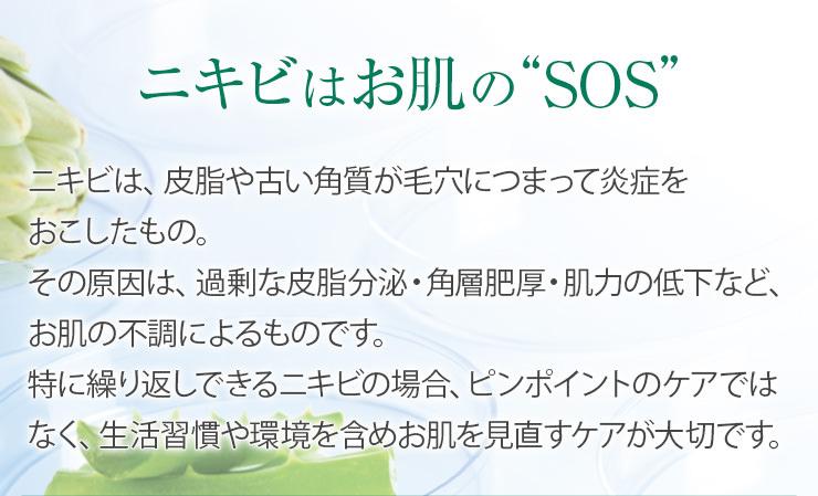 """ニキビはお肌の""""SOS"""""""